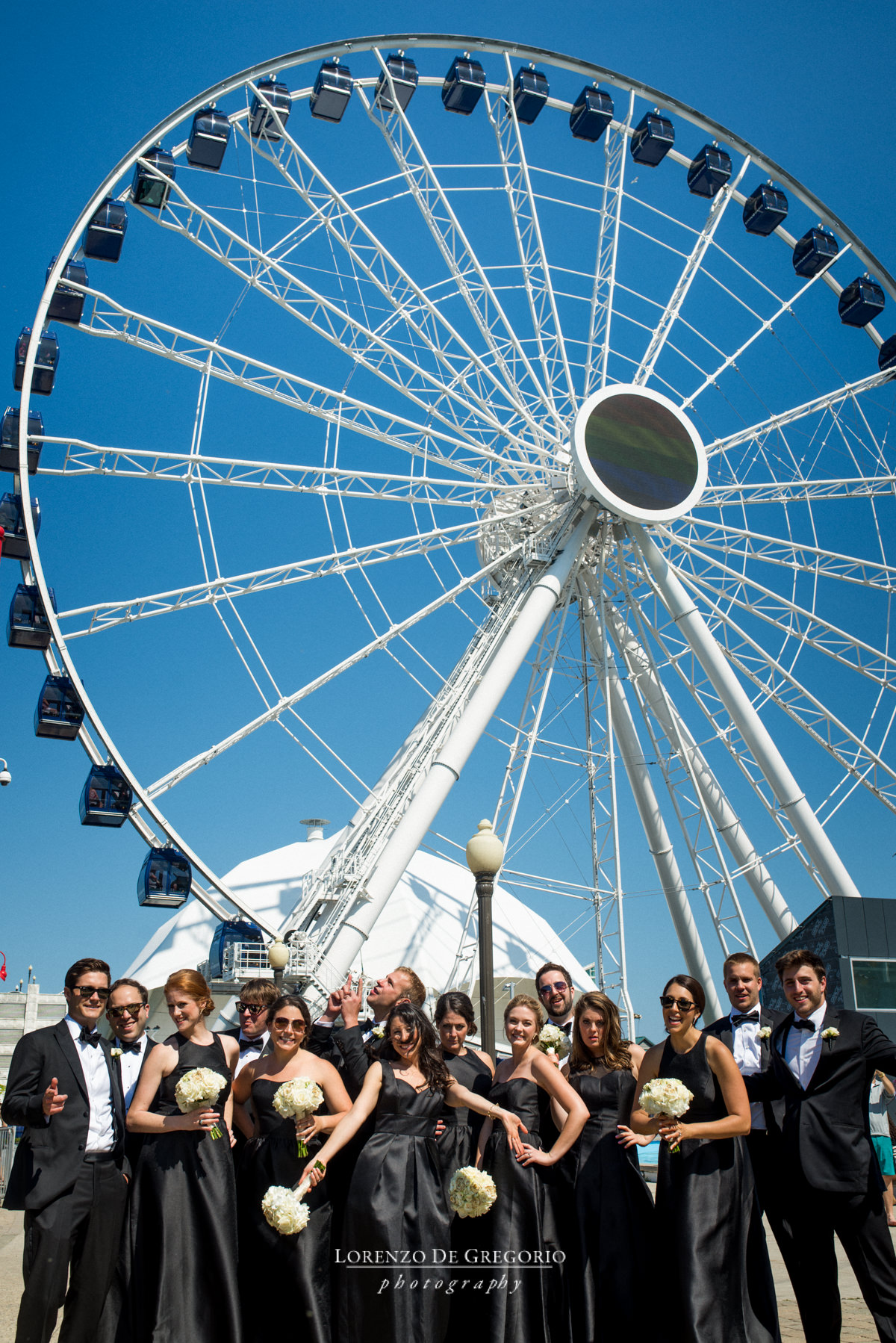 Navy Pier wedding pictures